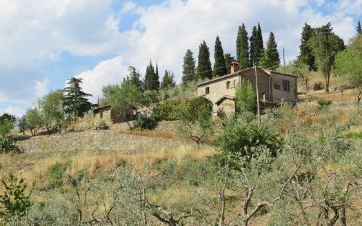 Toschouse Immobiliare Cortona